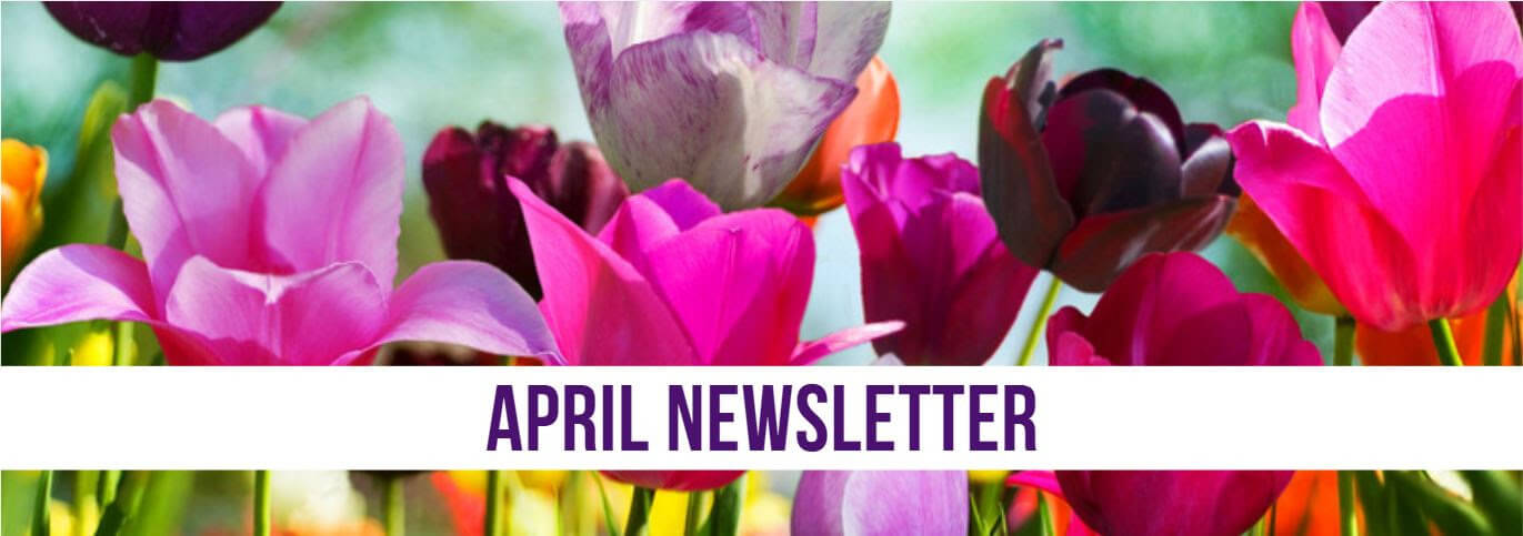 April Newsletter title over colorful red and pink tulips